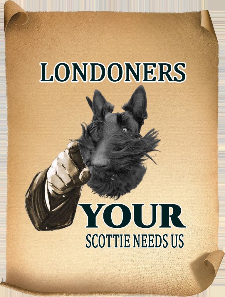 London Scottie Club Join